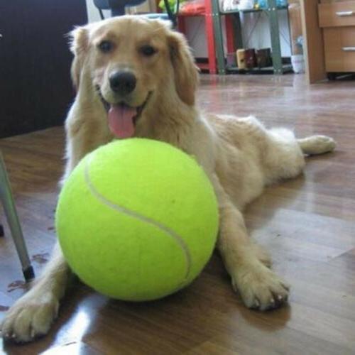"""Hot 9.5"""" Big Giant Pet Dog Puppy Tennis Ball Thrower Chucker"""